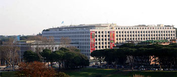 FAO Head office